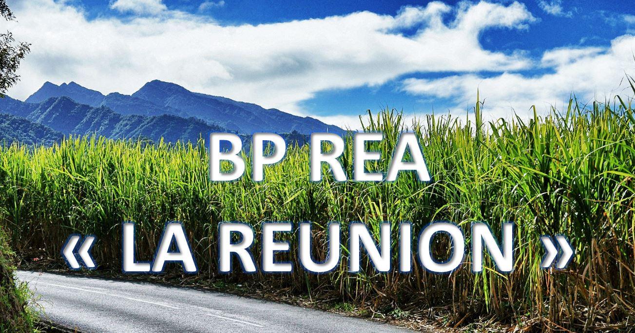 BP REA LA REUNION 2020