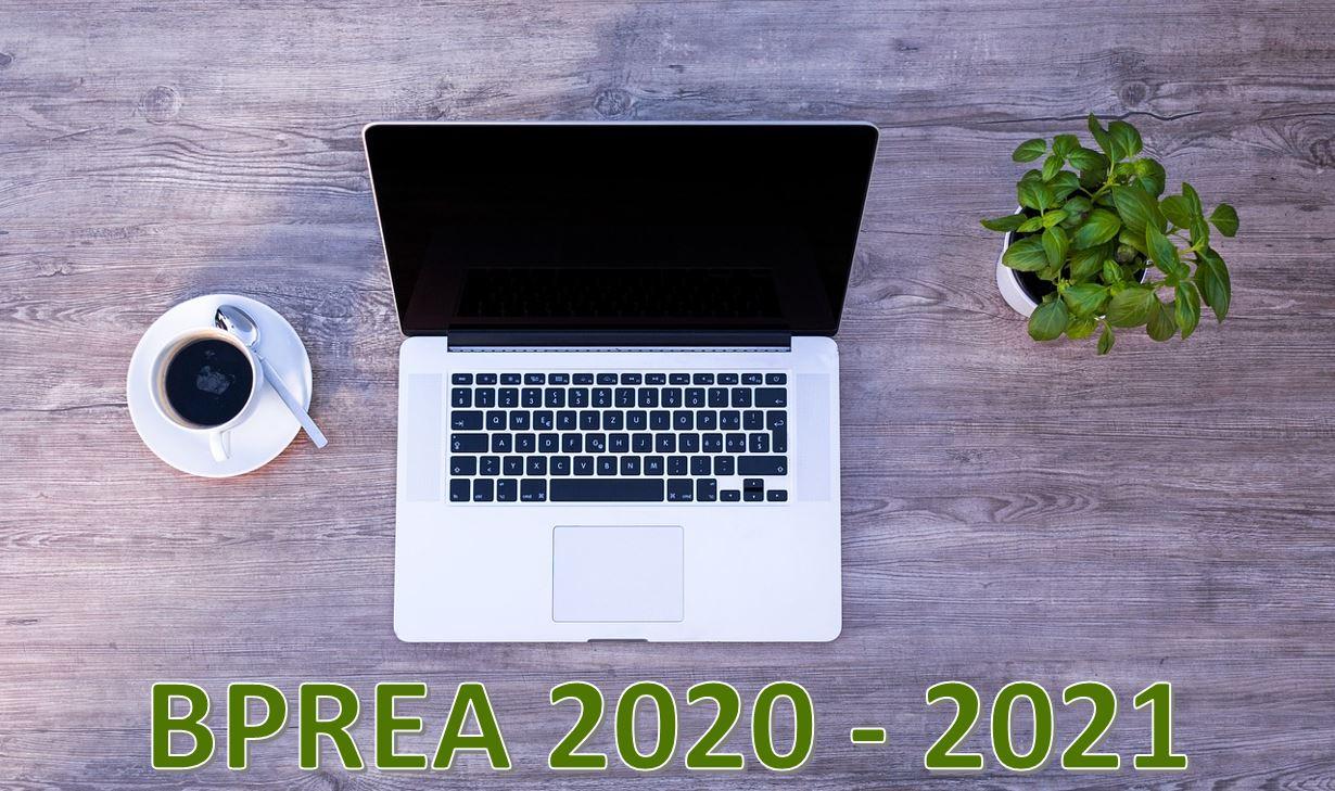 BPREA 2020-2021 : Accompagnement Epreuves (UC2 / UC4)