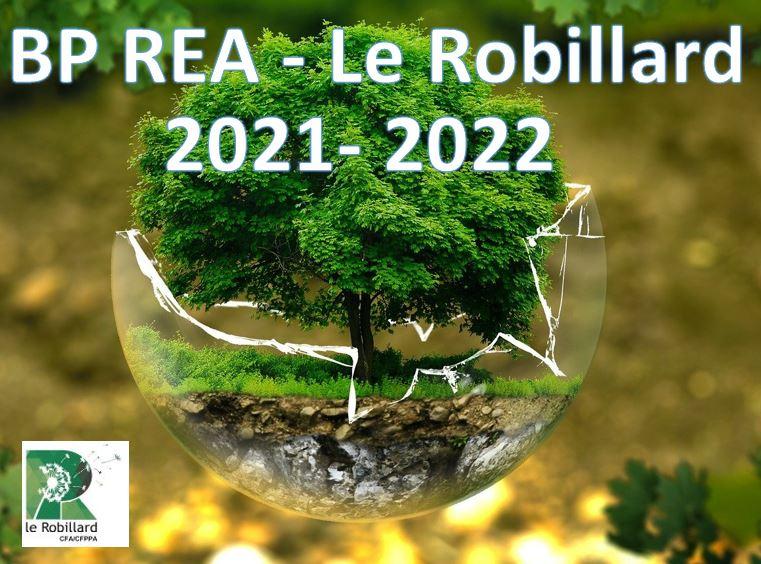 BPREA Multimodal 2021-2022